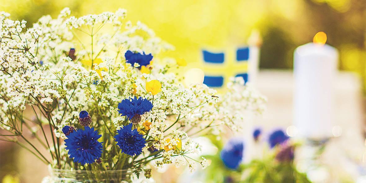 Svenska dag för dag